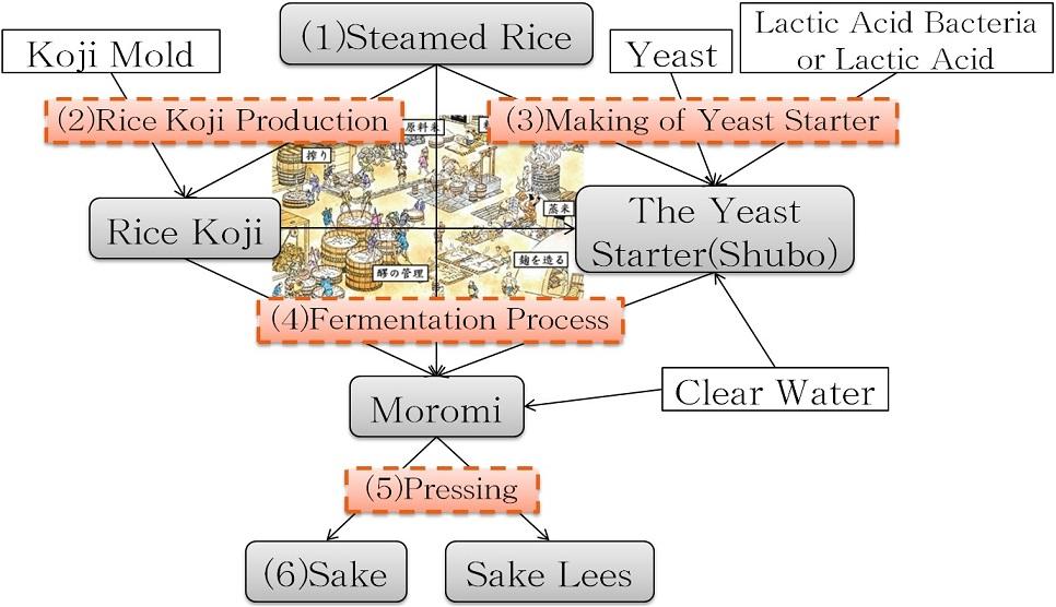 Brew Process